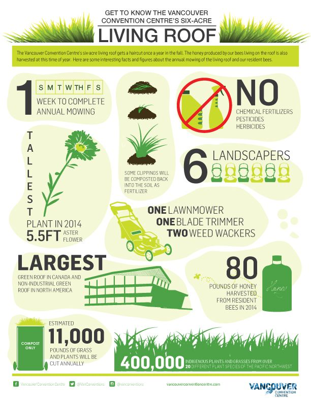 Vancouver Convention Centre Green Roof Infographic Convention Centre Green Roof What Is Green