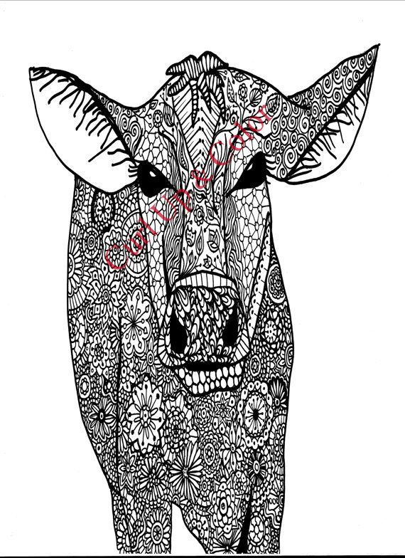 Adult Coloring Page Cow Instant Download Zentangle Doodle
