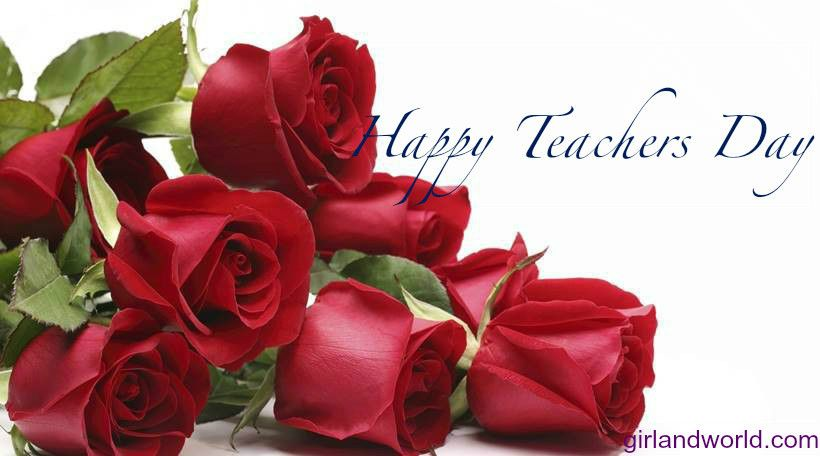 Teachers Day Quotes Roses Only Rose Flowers