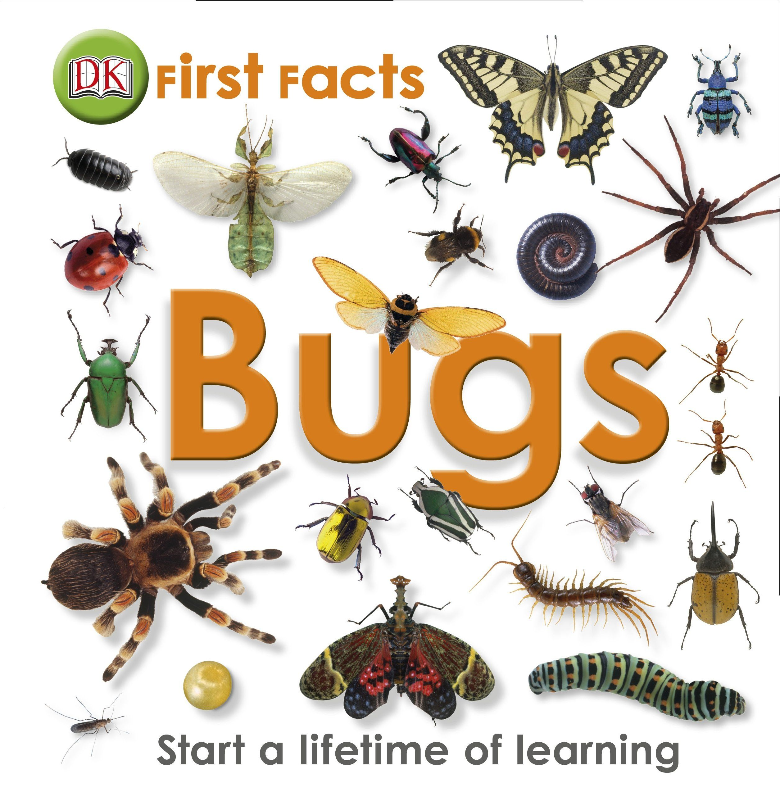 Amazon First Company: First Facts Bugs: Amazon.co.uk: DK: 9781405368131: Books