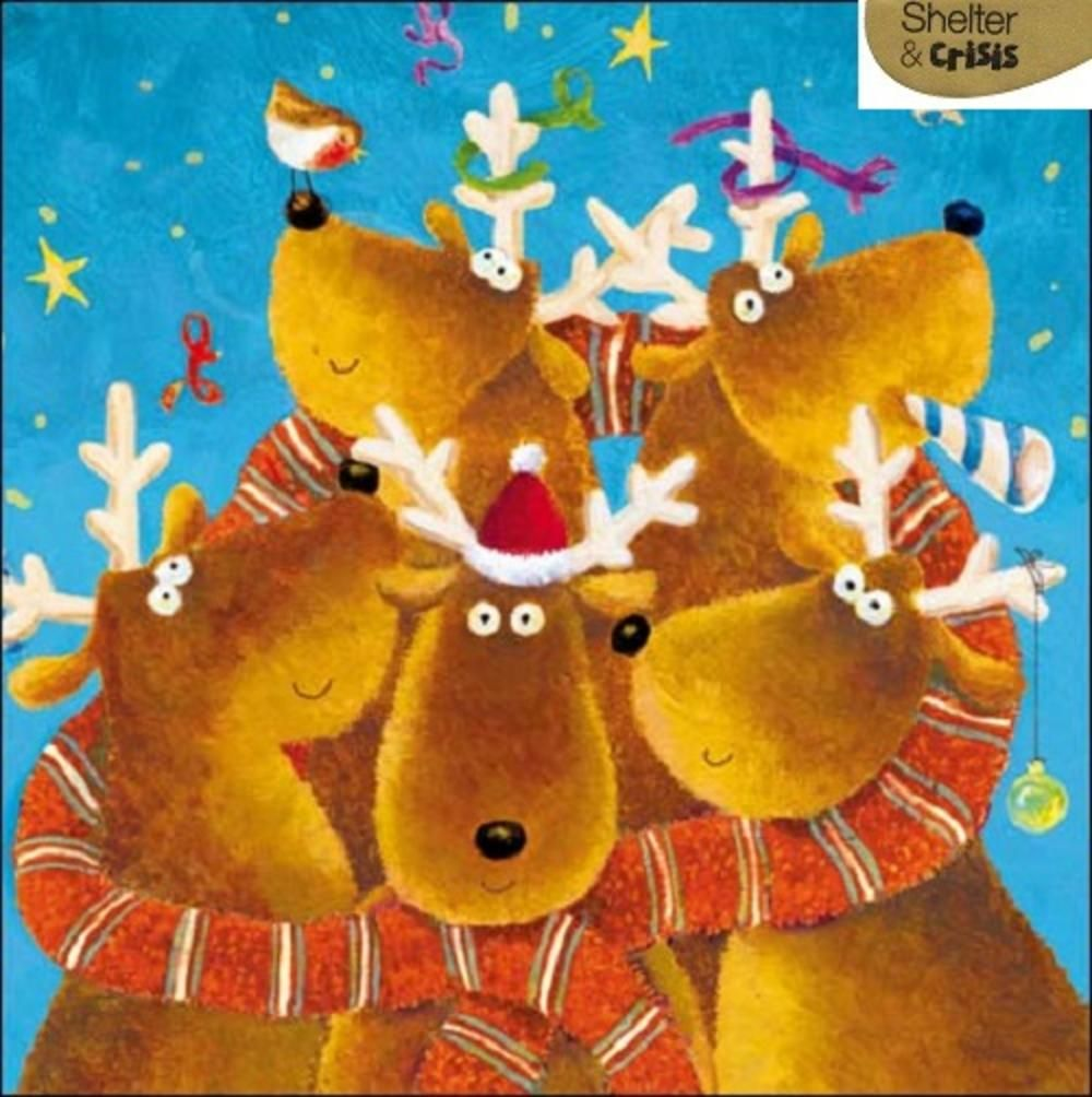 Pack of 5 reindeers shelter crisis charity christmas cards pack of 5 reindeers shelter crisis charity christmas cards kristyandbryce Image collections