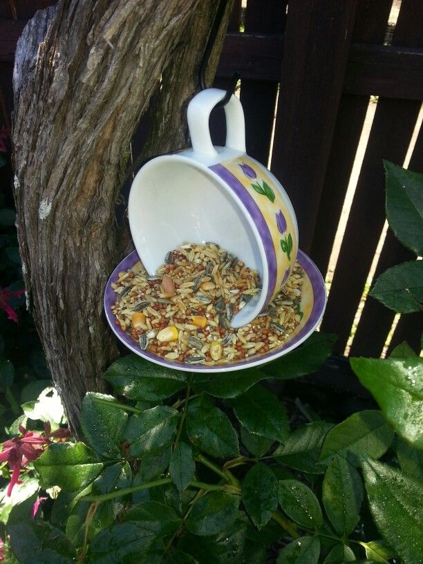 Teacup birdfeeder | Tea cup bird feeder, Bird feeders ...