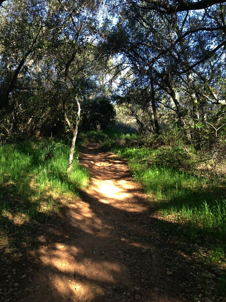 The Most Amazing Hiking Trails In The Inland Empire | Hiking trails, Day trips, Trail