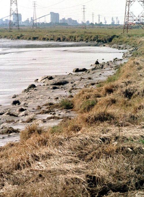 Huelva esconde un desastre ambiental «desconocido»