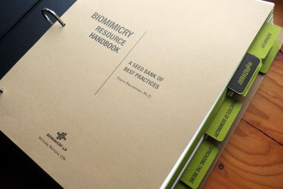 Resource Handbook Biomimicry 3 8 Resources Research Projects Make Design