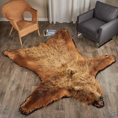 390x390 6 foot 8 inch 203 cm grizzly bear rug 7000652 01 390 390 pixels christmas. Black Bedroom Furniture Sets. Home Design Ideas