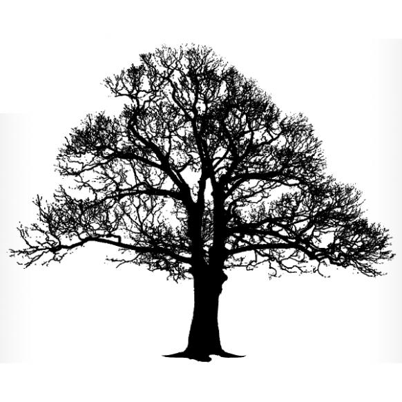 The Story Of Oak Tree Silhouette Tattoo Has Simply Gone Viral Oak Tree Silhouette Tatt Tree Silhouette Tattoo Oak Tree Silhouette Tattoo Oak Tree Silhouette