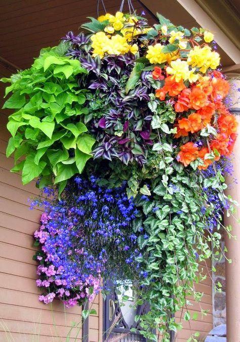 Top Super Hanging Flower Basket Ideas | Pinterest | Hanging flower ...
