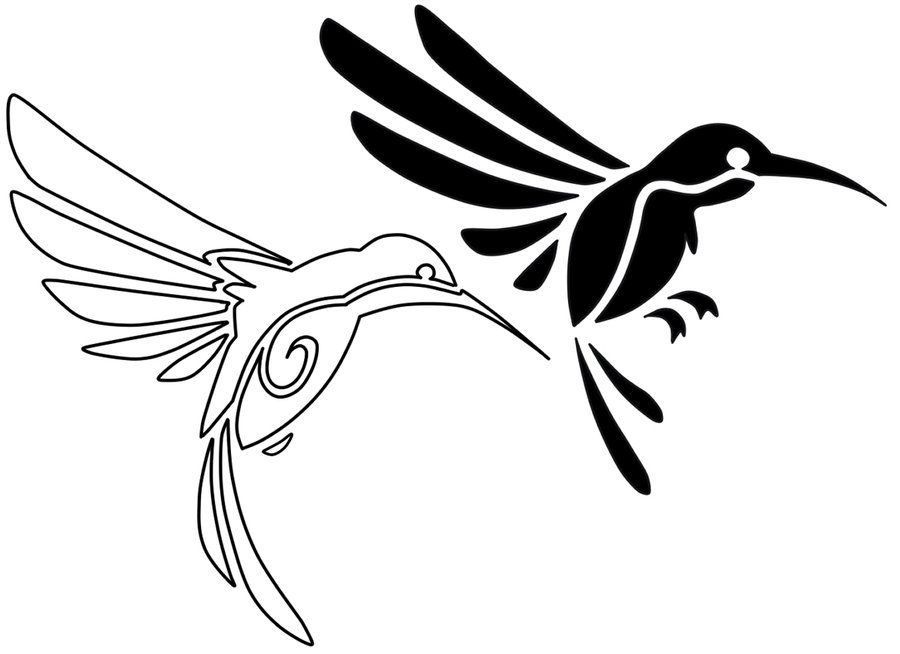 Line Art Hummingbird : Gallery for gt hummingbird line drawing tattoo flash