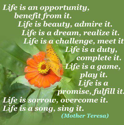 Life Is An Opportunitybenefit From Itlife Is Beauty