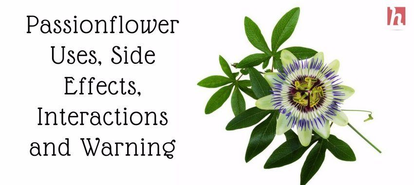 Passionflower Uses Side Effects Interactions And Warnings Passion Flower Benefits Passion Flower Side Effects