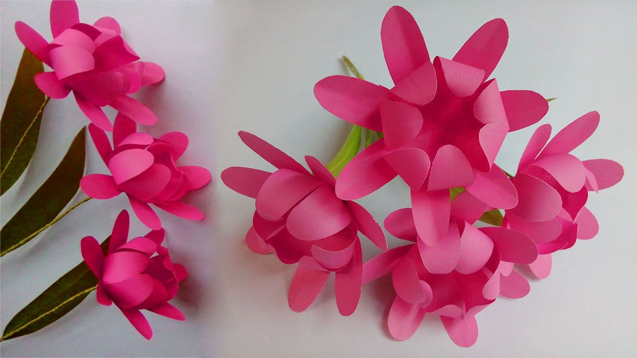Dear Paper Flowers Lover Welcome To My Channel For Enjoying