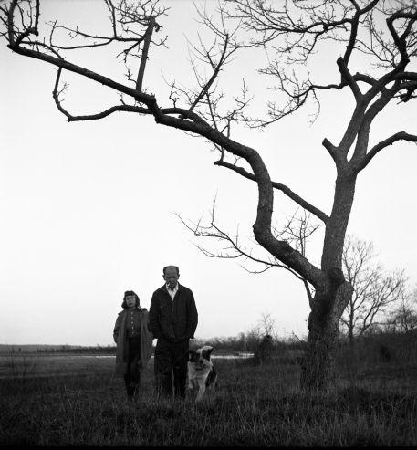 Jackson Pollock and Lee Krasner, Long Island, April 1949