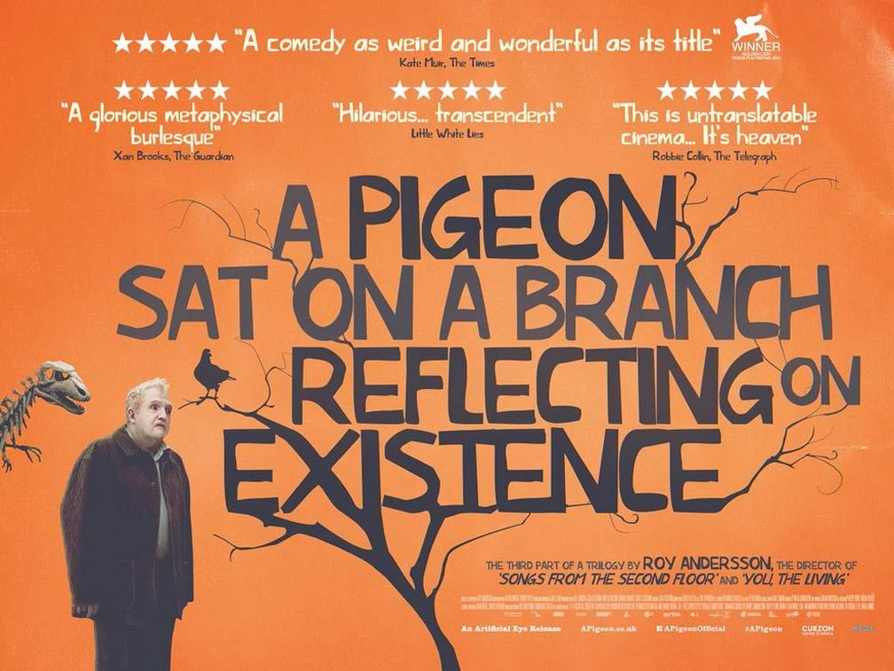 A Pigeon Sat on a Branch Reflecting on Existence | Pigeon, Roy ...