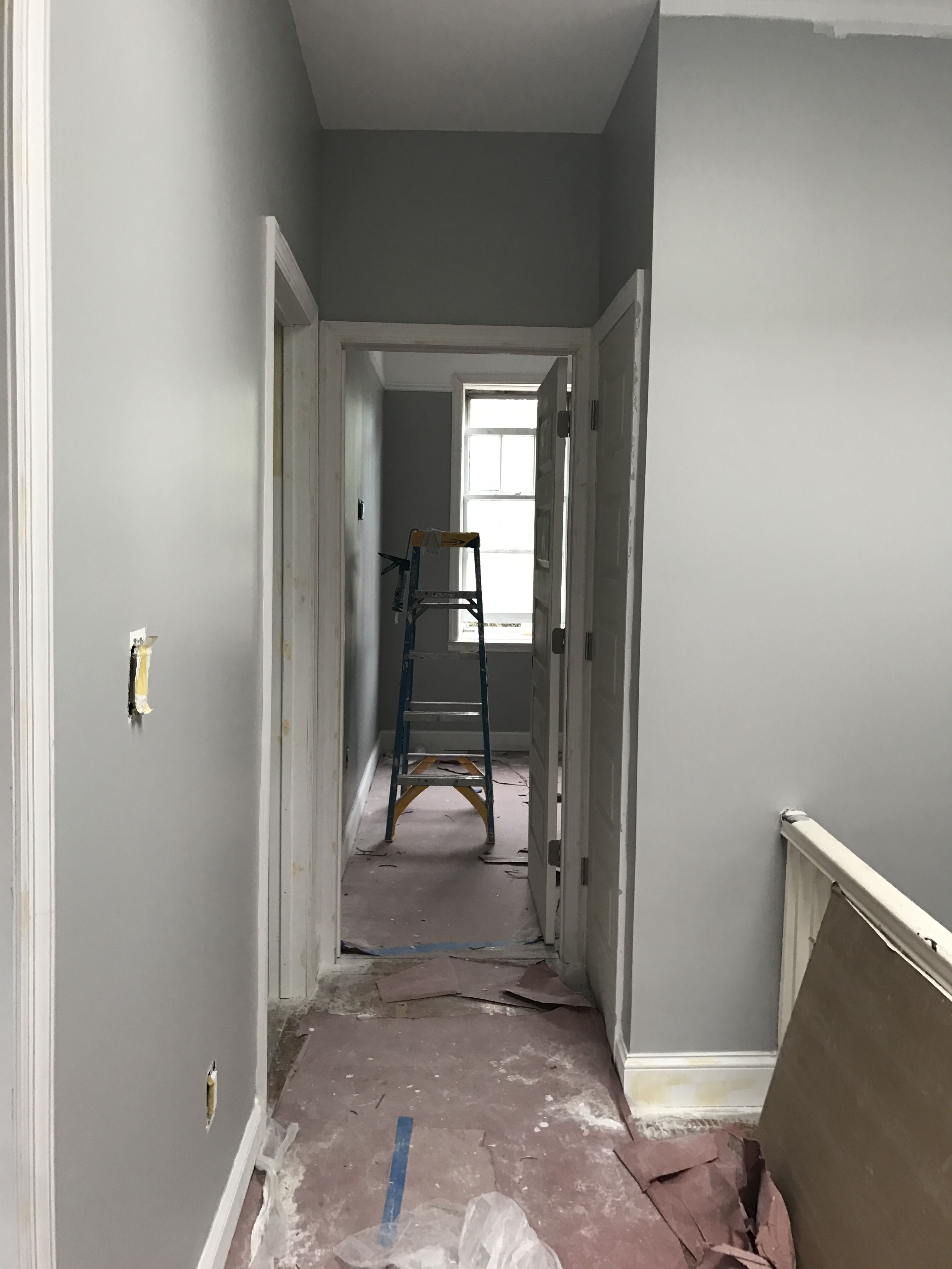 Best Walls Sherwin Williams Light French Grey Grey Wall Color 400 x 300