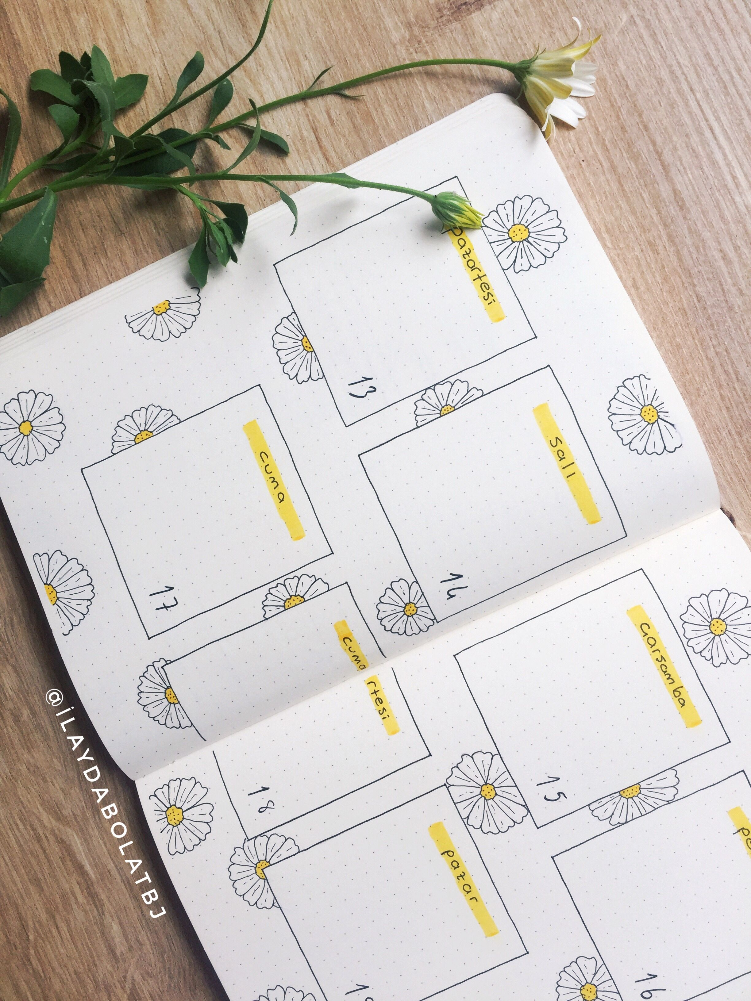 Bullet Journal April theme is 'DAISY!' Join me and Let's we make journal!