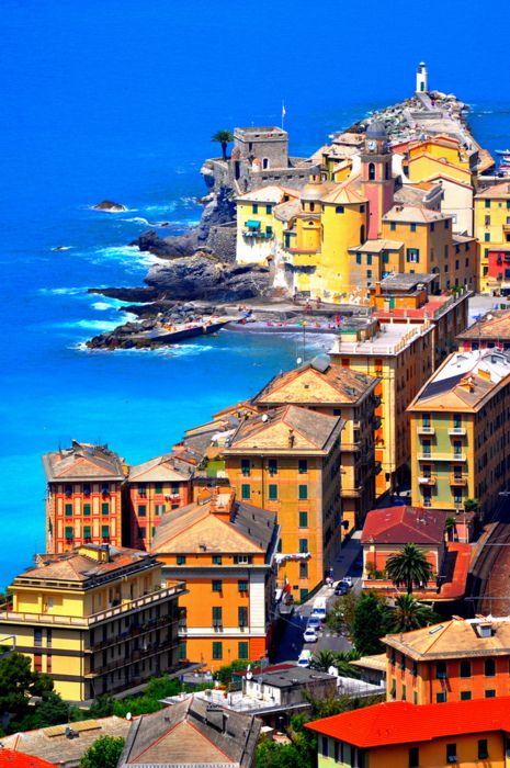 One of my favorite cities in Italy. I can't believe it's almost been a year..    sunsurfer:    Seaside Harbor, Camogli, Italy   photo by Lino Cannizzaro
