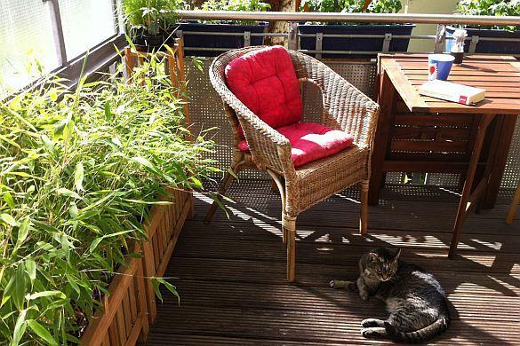 Was ist auf dem Balkon erlaubt? Normalerweise sind außen