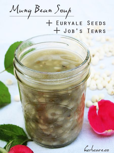 The benefits of Gordon Euryale Seeds #healthy #food #recipe #asian