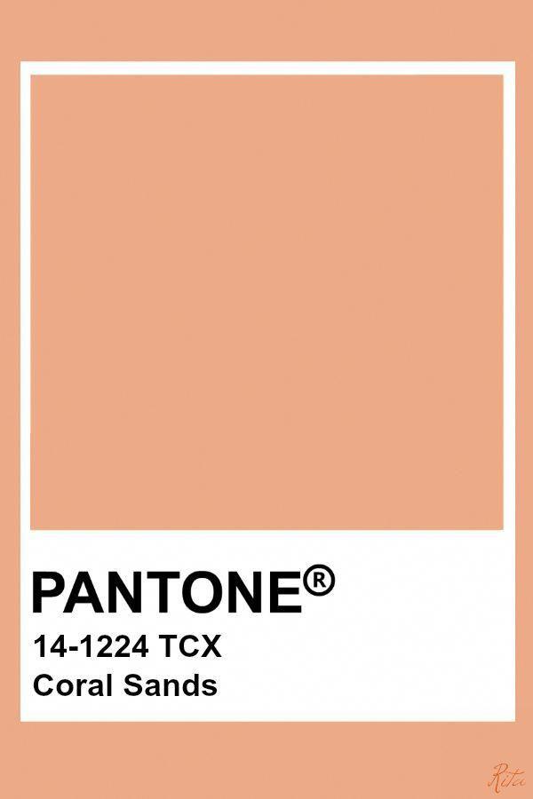 Shortmotivationalquotes Referral 1804137103 Pantone Palette Pantone Color Pantone Colour Palettes