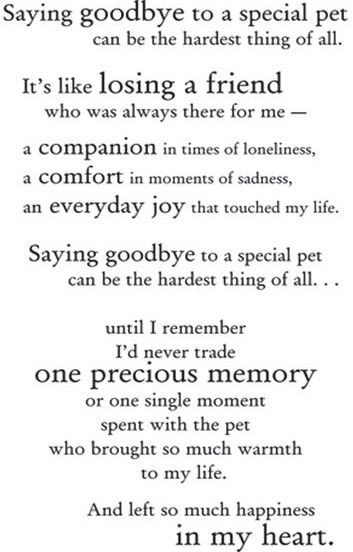 Miss You Everyday Pet Poems Dog Quotes Pet Loss Grief