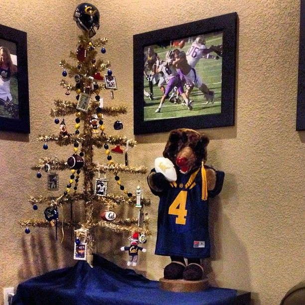 The #Cal tree in the #Cal room. #gobears via Cal Bears Online's on Instagram http://instagram.com/p/Sb4swdkTYf/