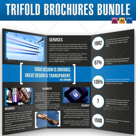 examples of trifold brochures - Forest.jovenesambientecas.co