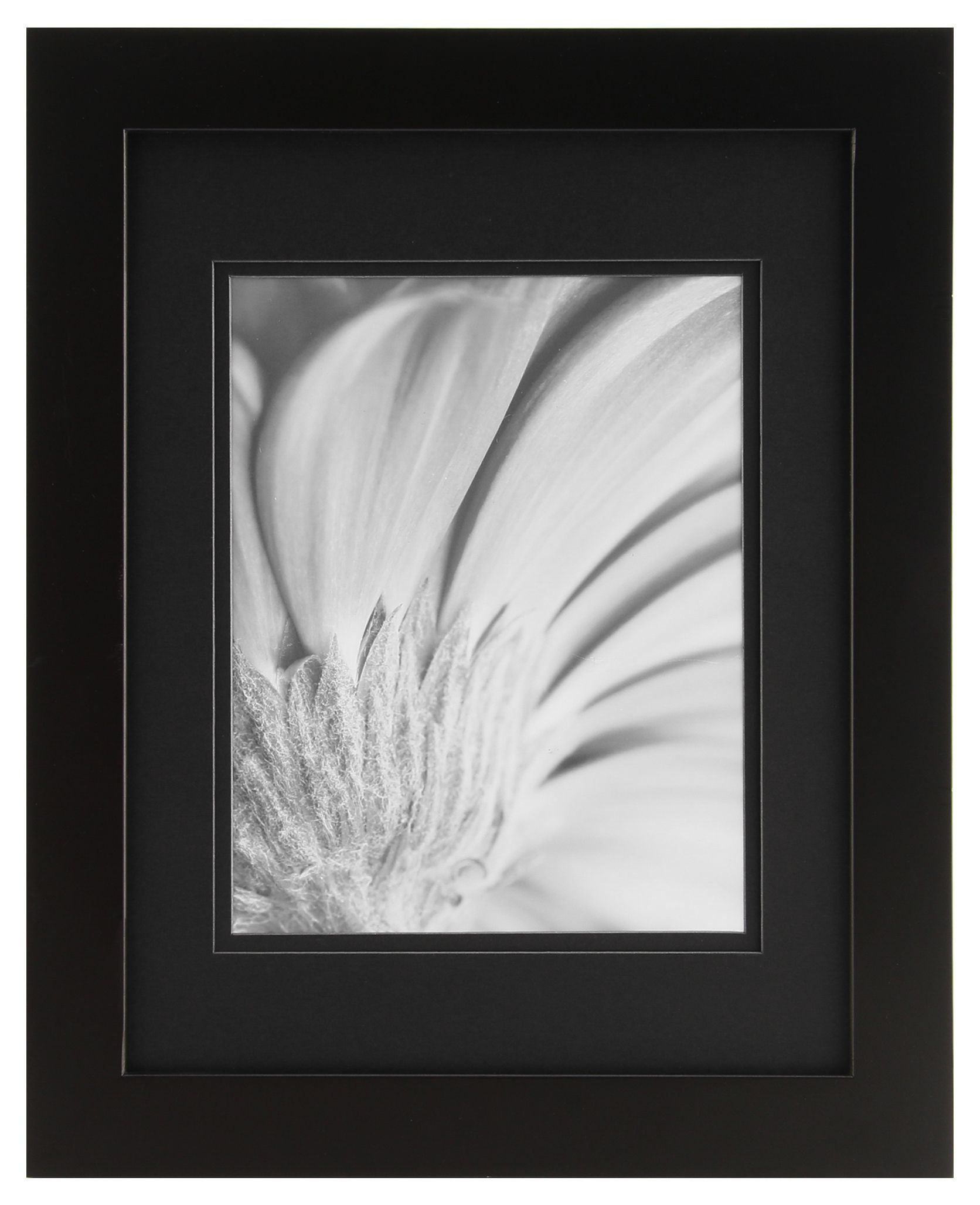 Gallery Solutions 11x14 Black Frame Matted To 8x10 Products