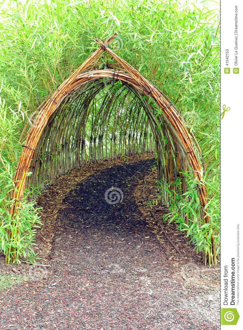 Whimsical And Magic Live Bamboo Plant Covered Tunnel As Secret