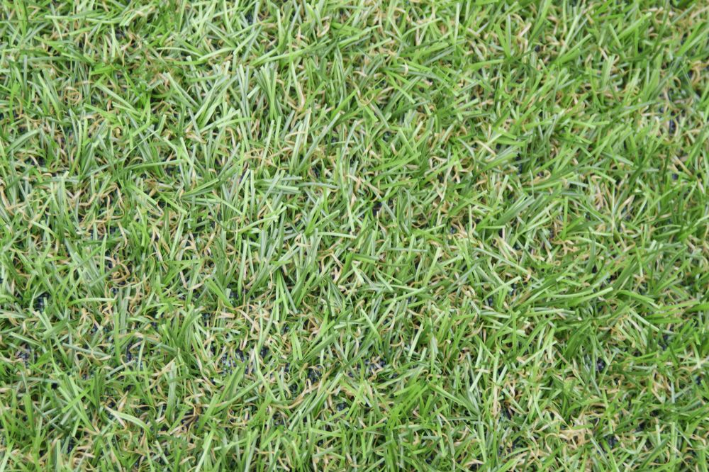 Fresh Artificial Grass (With images) Bermuda grass