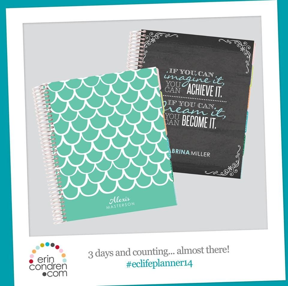 "New ""Mermaid Scales"" cover from @erincondren.com #lifeplanner #2015 #erincondren #eclifeplanner"