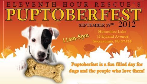 is our biggest event of the year. Join us on Saturday, September 29th from 11am-5pm for a day of fun! There will be live music, vendors, games, photos, contests, an agility course, K9 Good Citizen Testing, adopters parade, doggie fashion show, and much more!