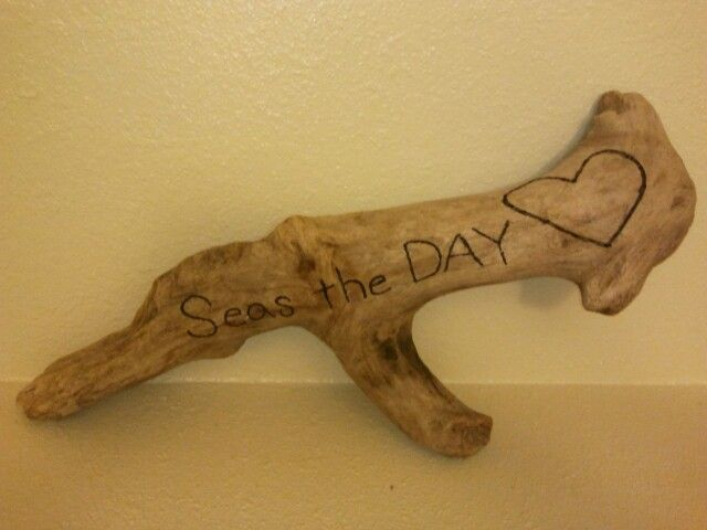Seas the DAY <3 Driftwood