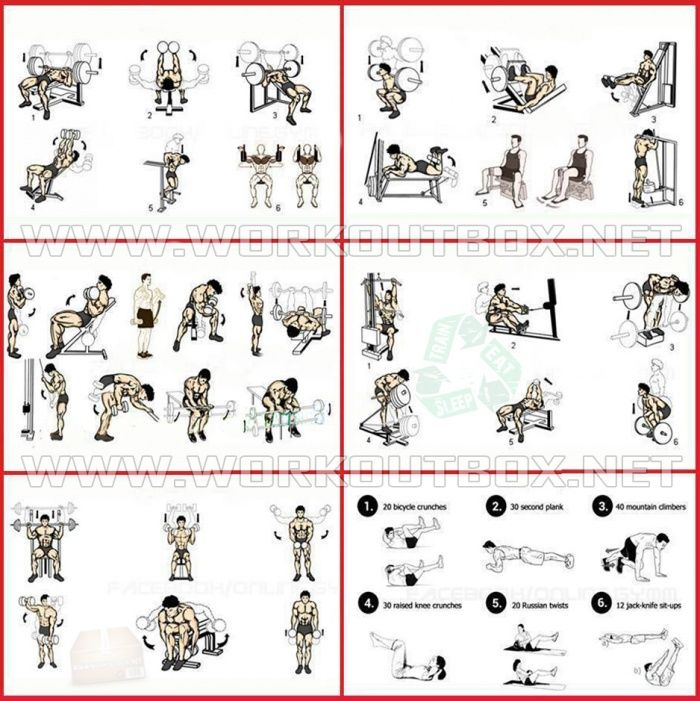 Full Week Workout Plan 6 Days Body Training For Muscle