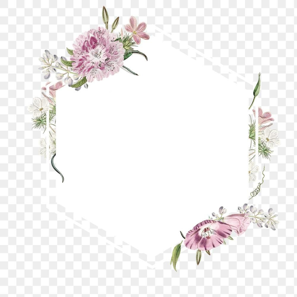 Beautiful Border Border Frame Category Border Png Transparent Clipart Image And Psd File For Free Download Flower Art Flower Background Wallpaper Flower Painting