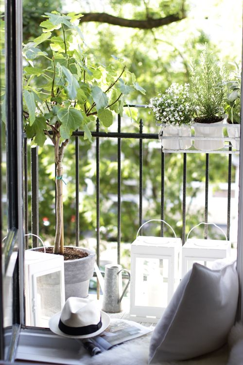 Pin By Marla Brannan On In And Out | Pinterest | Französisch ... Der Franzosische Balkon Ideen