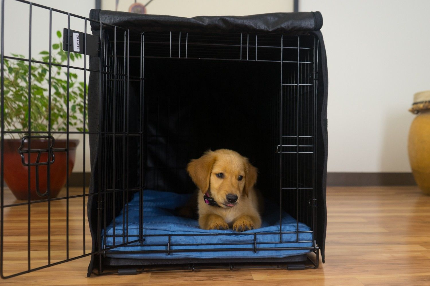 Tough Dog Crate Cover™ Dog crate, Crate cover, Dog bed