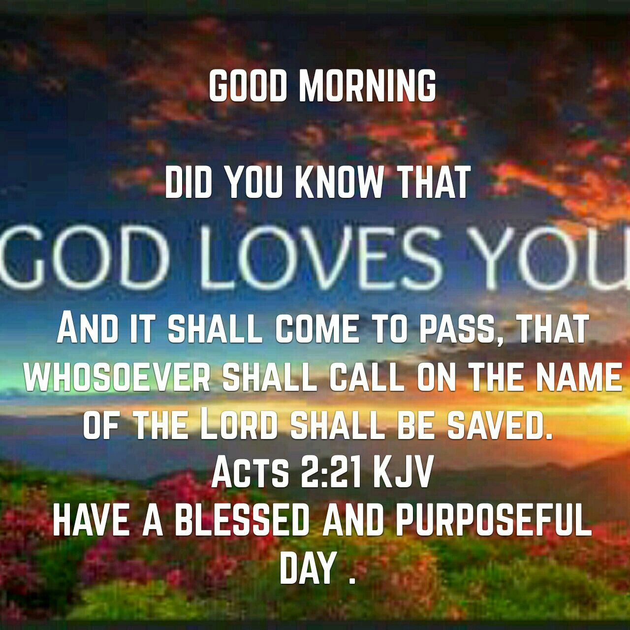 Pin by adella hall on greetings pinterest scriptures daily scripture good morning quotes scriptures good day quotes morning quotes bible verses scripture verses m4hsunfo