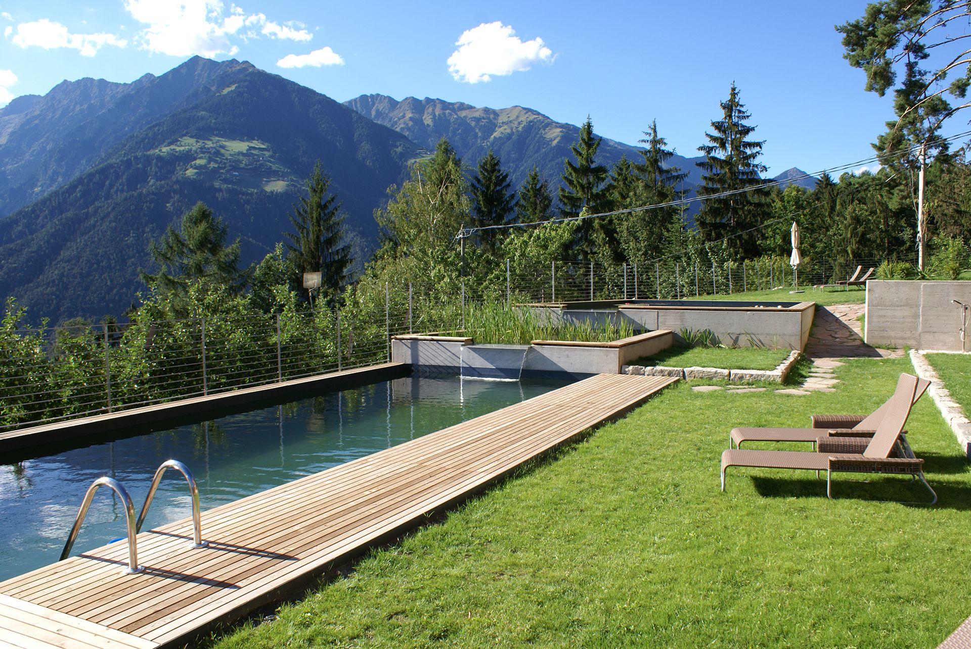 symbiose paysage piscine naturelle, biotop | l'olivier dreams