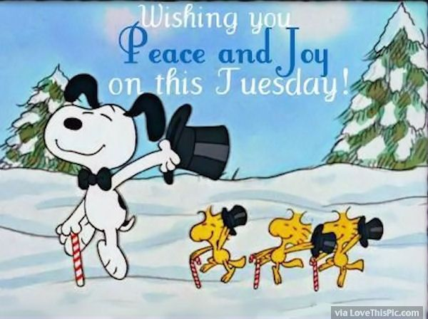 Wishing You Peace And Joy This Tuesday Tuesday Tuesday Quotes Happy Tuesday  Happy Tuesday Quotes Tuesday Quotes For Friends Winter Tuesday Quotes Cute  ...