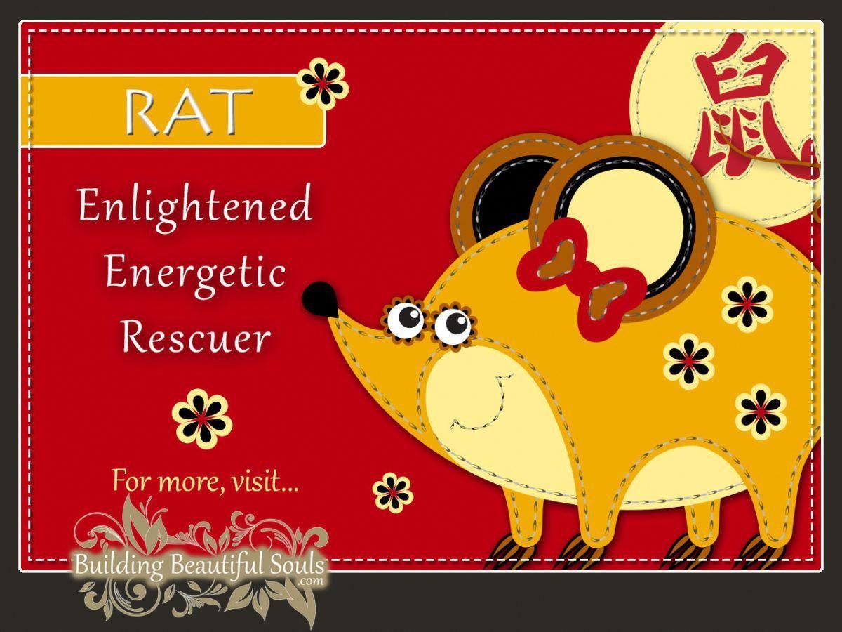 Chinese Zodiac Rat Year of the Rat Chinese New Year