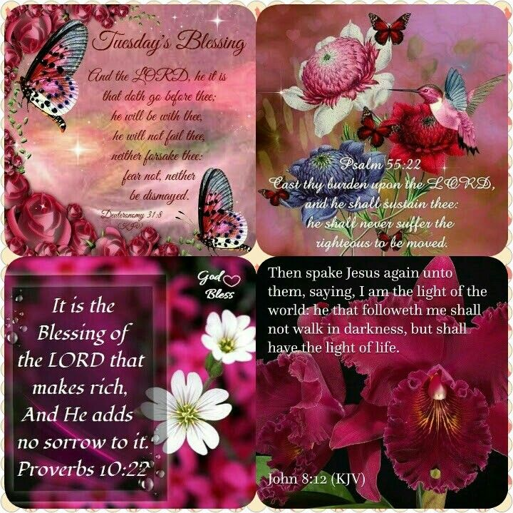 Pin on Daily blessings