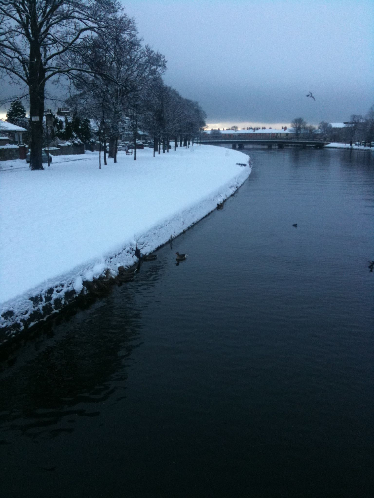 Musselburgh - River Esk in the snow