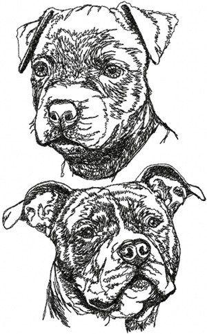 Embroidery Designs American Staffordshire Terrier