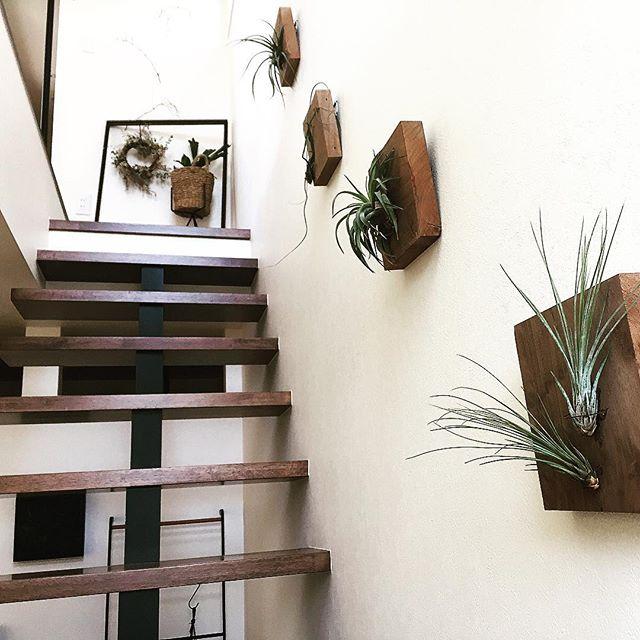 ちょい空き壁を活用 立体的でおしゃれに見える 掛ける ウォールデコ
