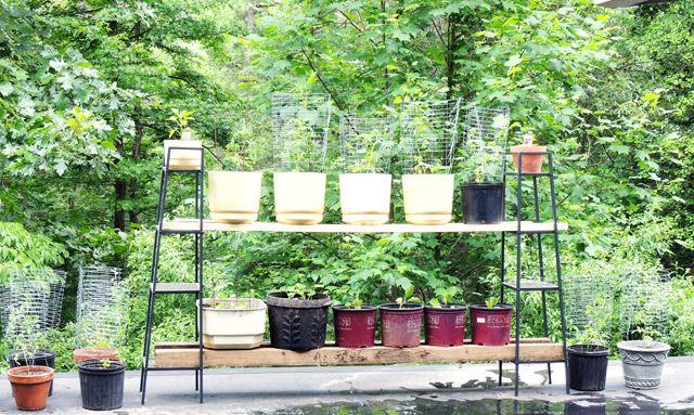 Rooftop Garden Using Ikea Lerberg Shelves Relooking