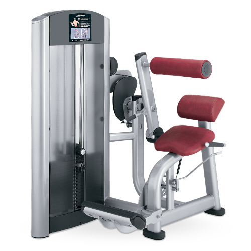 Insignia Series Back Extension Strength Equipment Gym Equipment Names Gym Fit Life