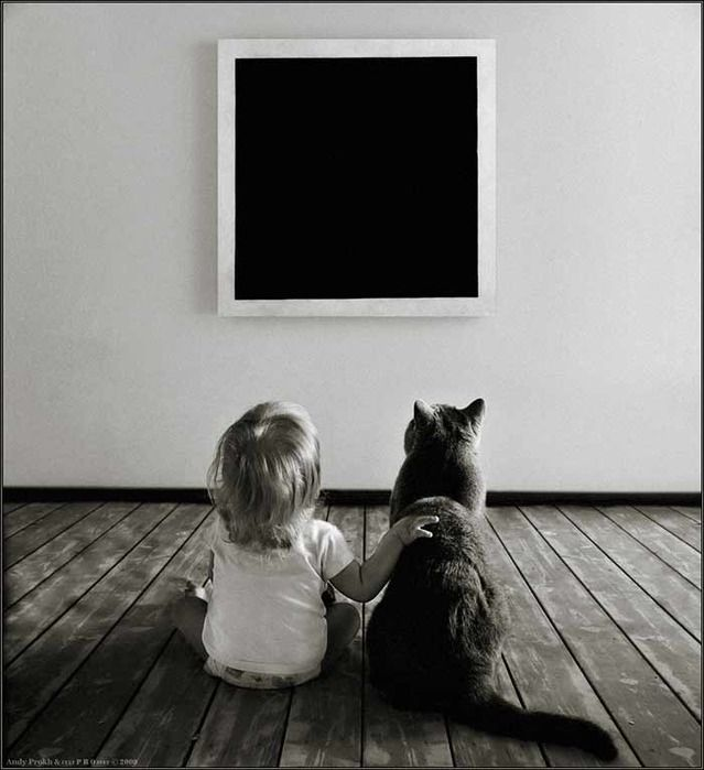 черный квадрат малевича: 10 тыс изображений найдено в ...