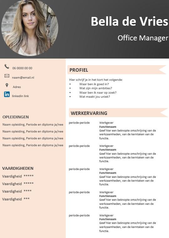 Een elegant voorbeeld CV, gratis download in Word Cv