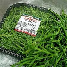 Image result for salicornia